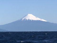駿河湾沖で釣りをしてきました!